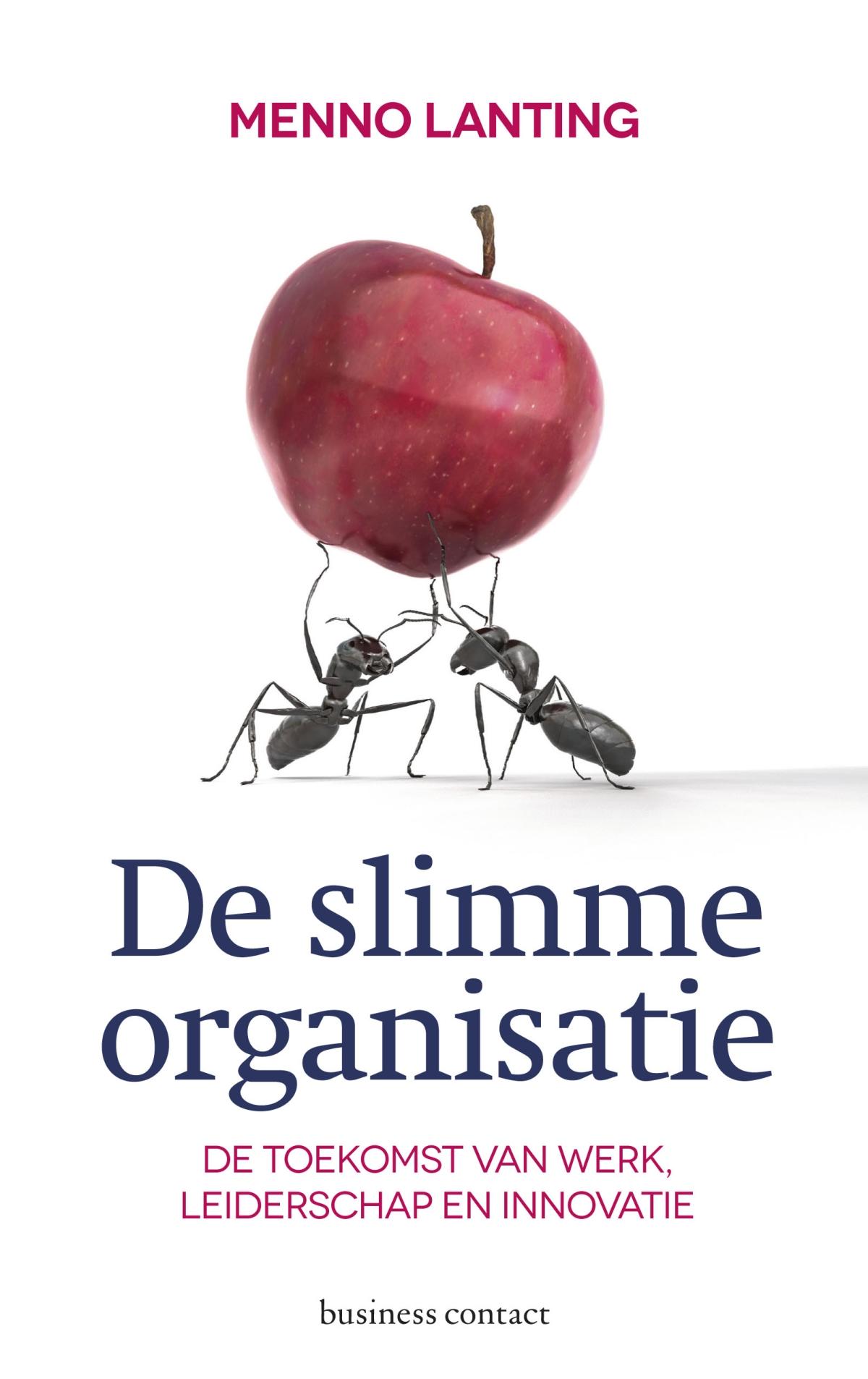 De slimme organisatie - Menno Lanting