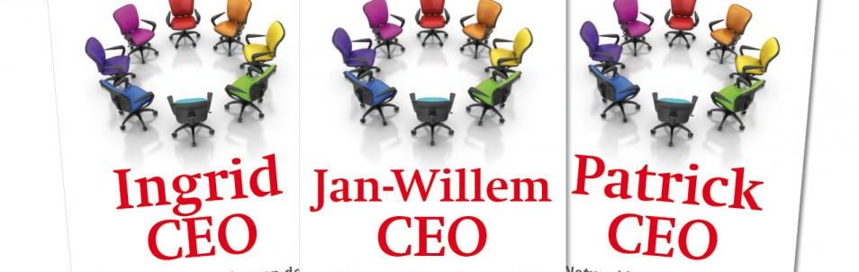 Netwerkleiderschap en de nieuwe organisatie