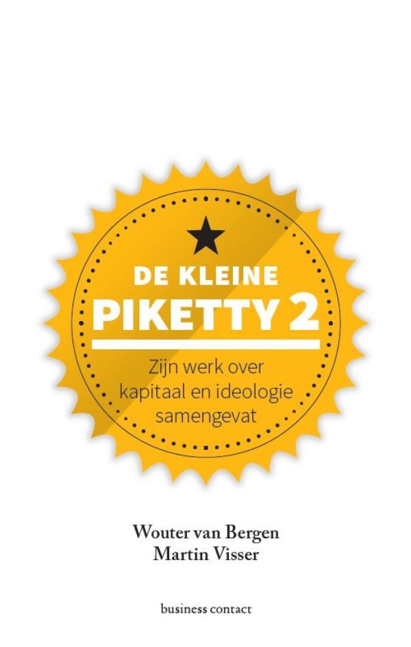 De kleine Piketty 2 - Wouter van BergenMartin Visser